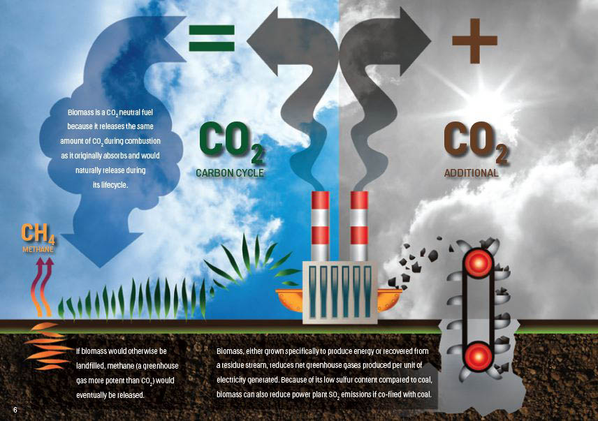 The CO2 cycle, explained