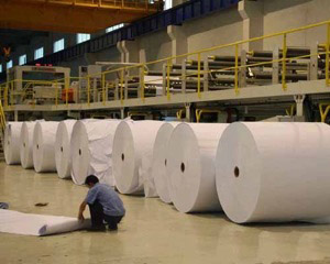 Wheat paper Plant, India