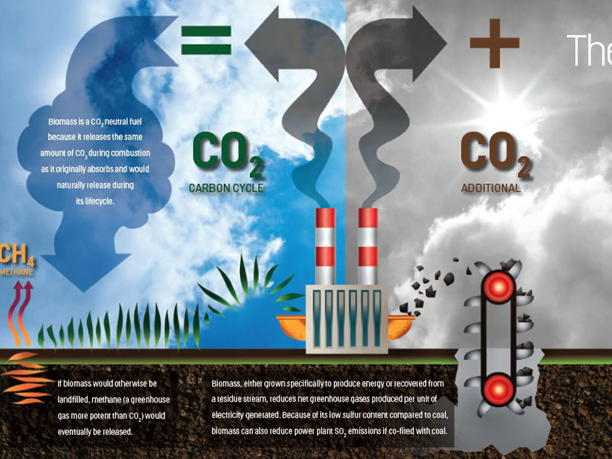 CO2 cycle illustration