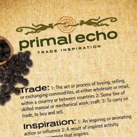 Primal Echo – Trade Inspiration