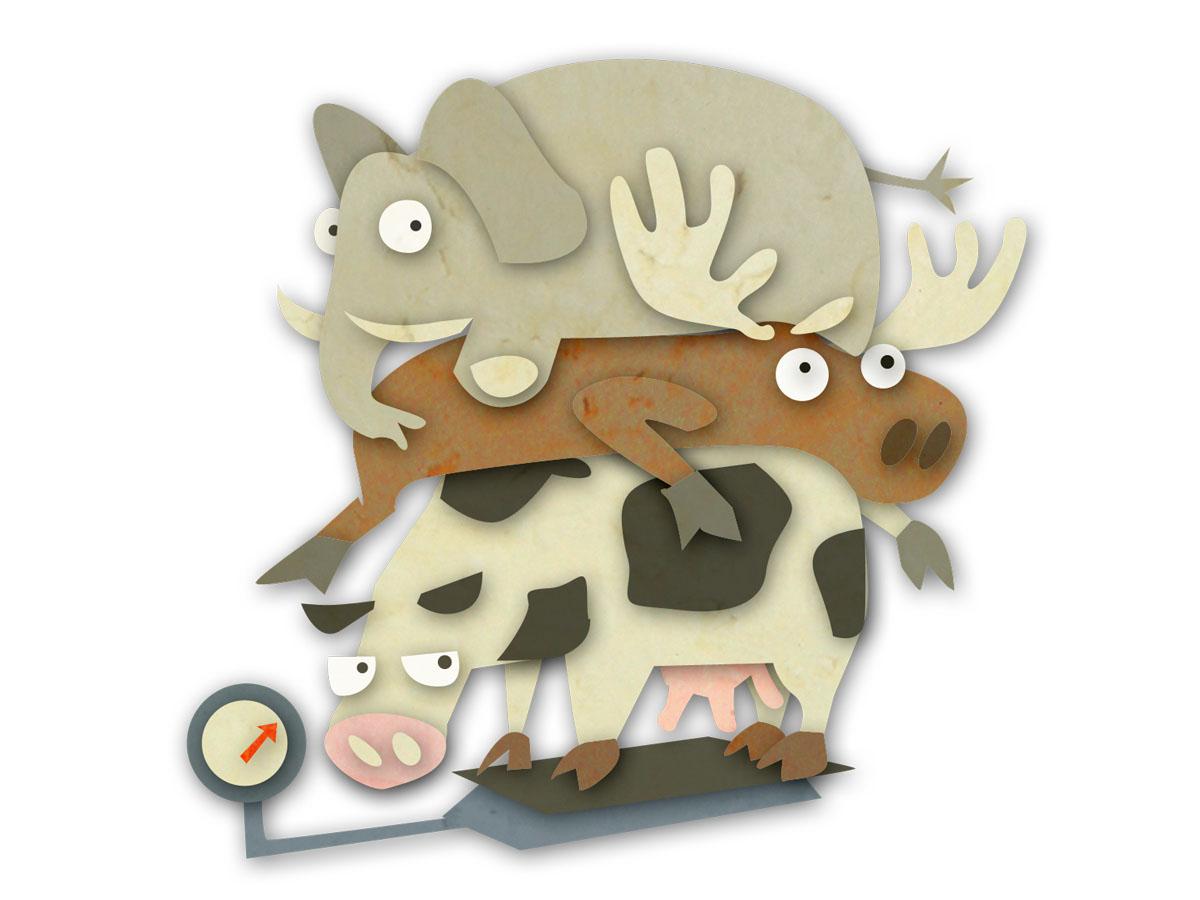 Heavy Animals