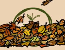One Tree Planted Animated Logo